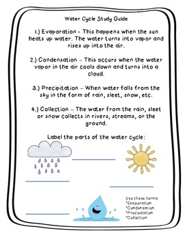 Water Cycle Study Guide with Diagram