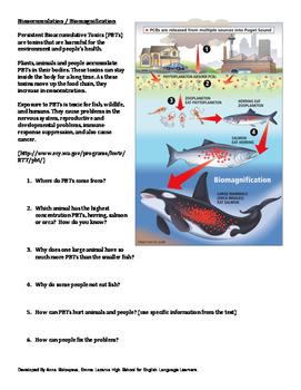 Water Pollution: Biomagnification, Acid Rain, Runoff (Livi