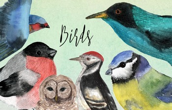 Watercolor Birds Clip Art - Prints