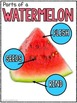 Watermelon Day Fun!