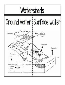Watersheds...Ground Water vs. Surface Water Foldable