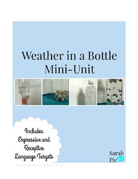 Weather Observations- Speech Mini Unit