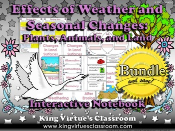 Effects of Weather and Seasonal Changes Interactive Notebo