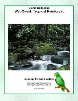 Rainforest - WebQuest