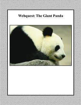 The Giant Panda- Grades  3-5-Webquest