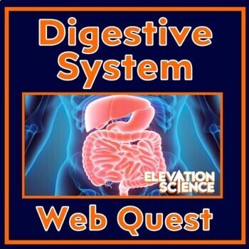Webquest:  Digestive System