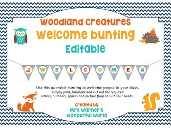 Welcome bunting - Woodland creatures (fox, squirrel, owl,