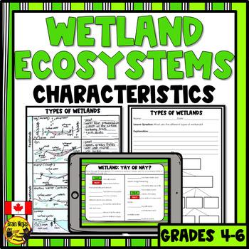 Wetlands- Descriptions and Types of Wetlands
