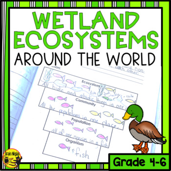 Wetlands- Ecosystems Around the World