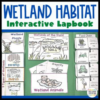 Wetlands: Interactive Lapbook