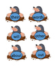 Whack-A-Mole First Grade Word Wall Words