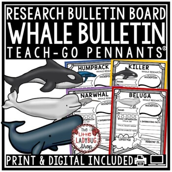 Whales Research Project & Rubric