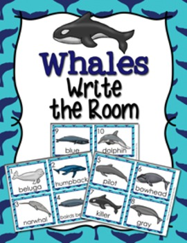 Whales Write the Room