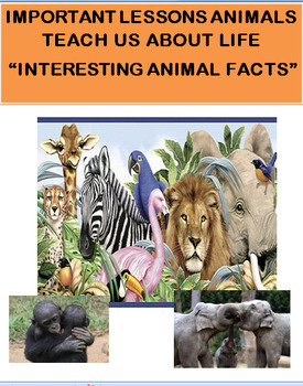 Important Lessons Animals can Teach us About Life Interest