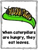 What Do Hungry Bugs Eat?  (A Sight Word Emergent Readers)