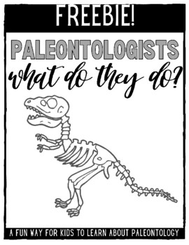 What Do Palaeontologists Do?