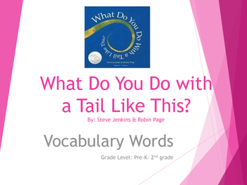 What Do You Do with a Tail Like This? Vocabulary Words