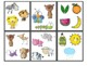What Doesn't Belong Flash Cards; Language Therapy; Classro