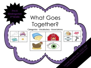 What Goes Together?: Interactive Adapted Book & Game