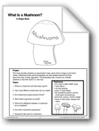 What Is a Mushroom?