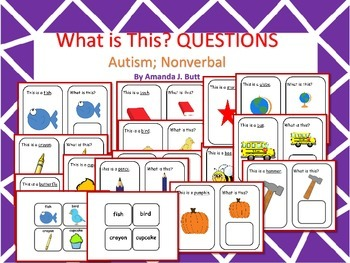 What Questions; Communication; Speech; Autism; Nonverbal;