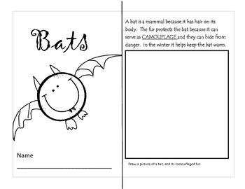 What do you know about bats? Reading comprehension pack