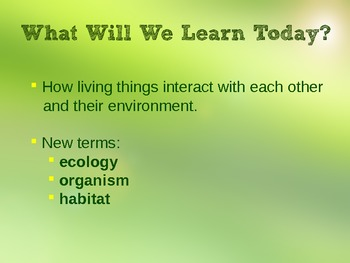 What is Ecology? PowerPoint
