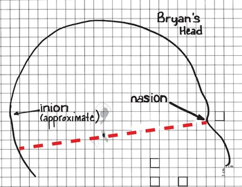 What is a brain?  A Mathematical Exploration