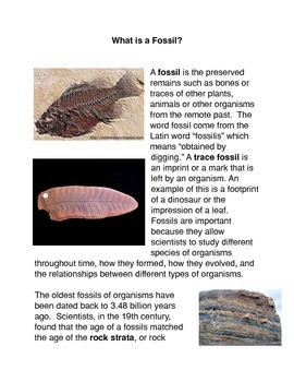 What is a fossil?  Common Core Activity