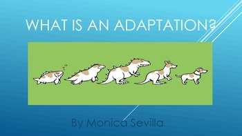 What is an Adaptation? eBook