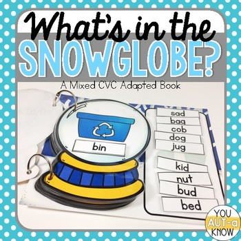 What's in the Snow Globe?  CVC Adapted Book: Mixed CVC Version