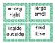 Antonym Literacy Game - What's My Antonym