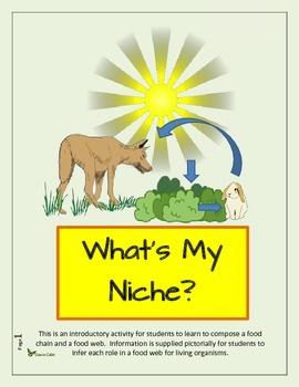 What's My Niche?