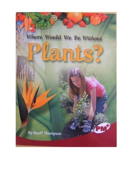 Where Would we be Without Plants?, comprehension questions