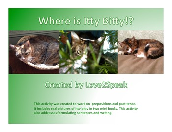 Where is/was the Cat? Preposition and Past Tense Mini Book