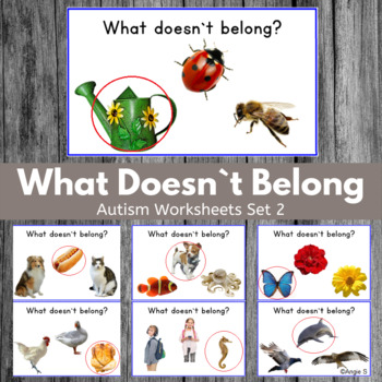 Which One Does Not Belong? Speech Therapy and Special Ed Set 2