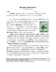 St. Patrick Grammar Practice: Parts of Speech  (2 Pages, A