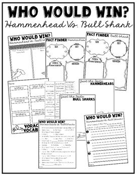 Who Would Win:  Hammerheads Vs. Bull Sharks