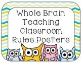 Whole Brain Teacher Rules Owl Themed