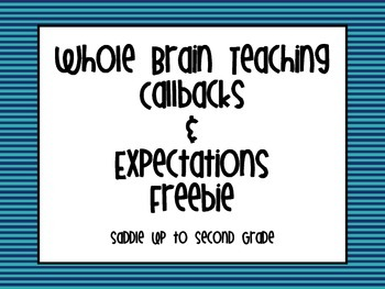 Whole Brain Teaching Posters - Updated!