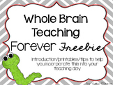 Whole Brain Teaching printables { tips/posters }