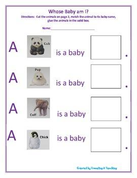 Whose Baby Am I? Worksheet