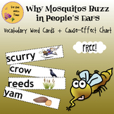 Why Mosquitos Buzz in People's Ears Wordcards