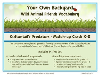 Wild Animal Friends  Cottontail Match-up Cards K-3