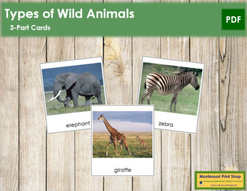 Wild Animals: 3-Part Cards
