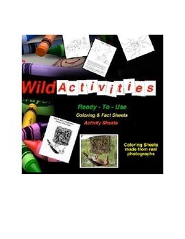 WildActivities
