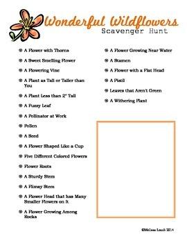 Wildflower Scavenger Hunt