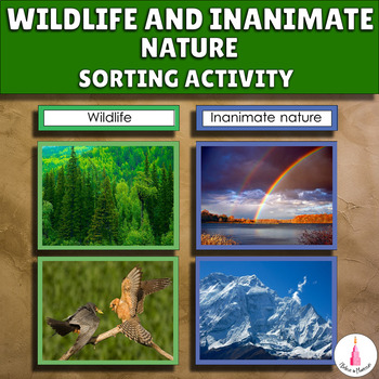 Montessori Wildlife and Inanimate Nature Sorting Cards