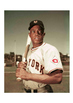 Willie Mays Baseball Word Search