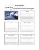 Winter Animal Report Packet- Polar Bear, Penguin, Seal, Re